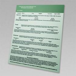 Sample Report of Soil Foodweb Qualitative Analysis Biological Testing