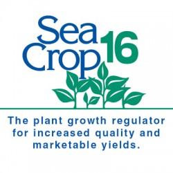 Sea Crop 16