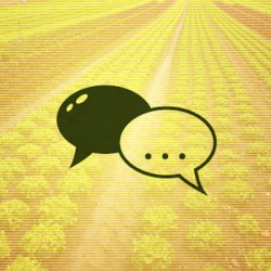 field-consultation