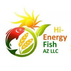 high energy fish